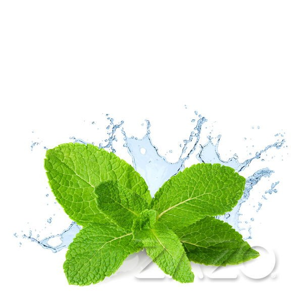 Fresh Mint Liquid Zazo