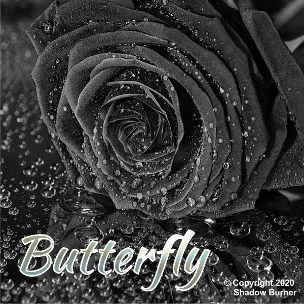 Butterfly Aroma Shadow Burner
