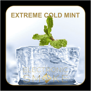Extreme Cold Mint Aroma Dark Burner