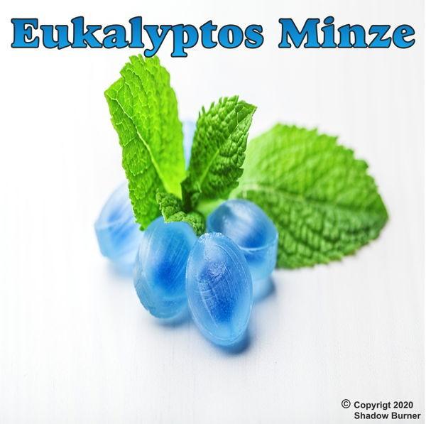 Eukalyptus Minze Aroma Shadow Burner